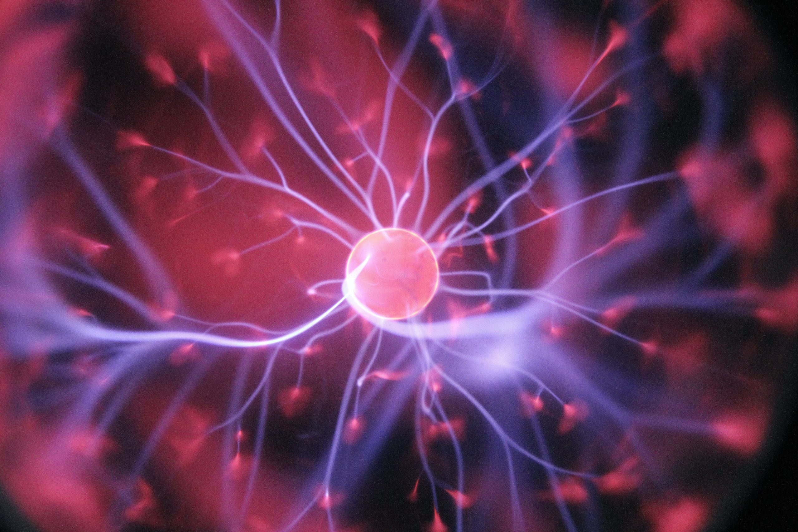 neurotransmitters bij stress
